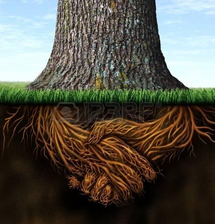15491712-de-fortes-racines-profondes-d-affaires-comme-un-tronc-d-arbre-avec-la-racine-dans-la-forme-d-une-poi-1