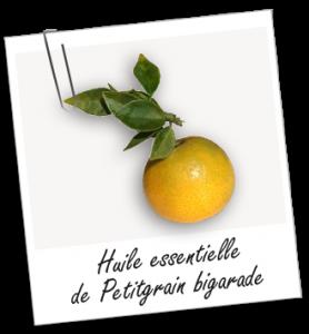 ft_trombone_plante_he_petitgrain-bigarade_0
