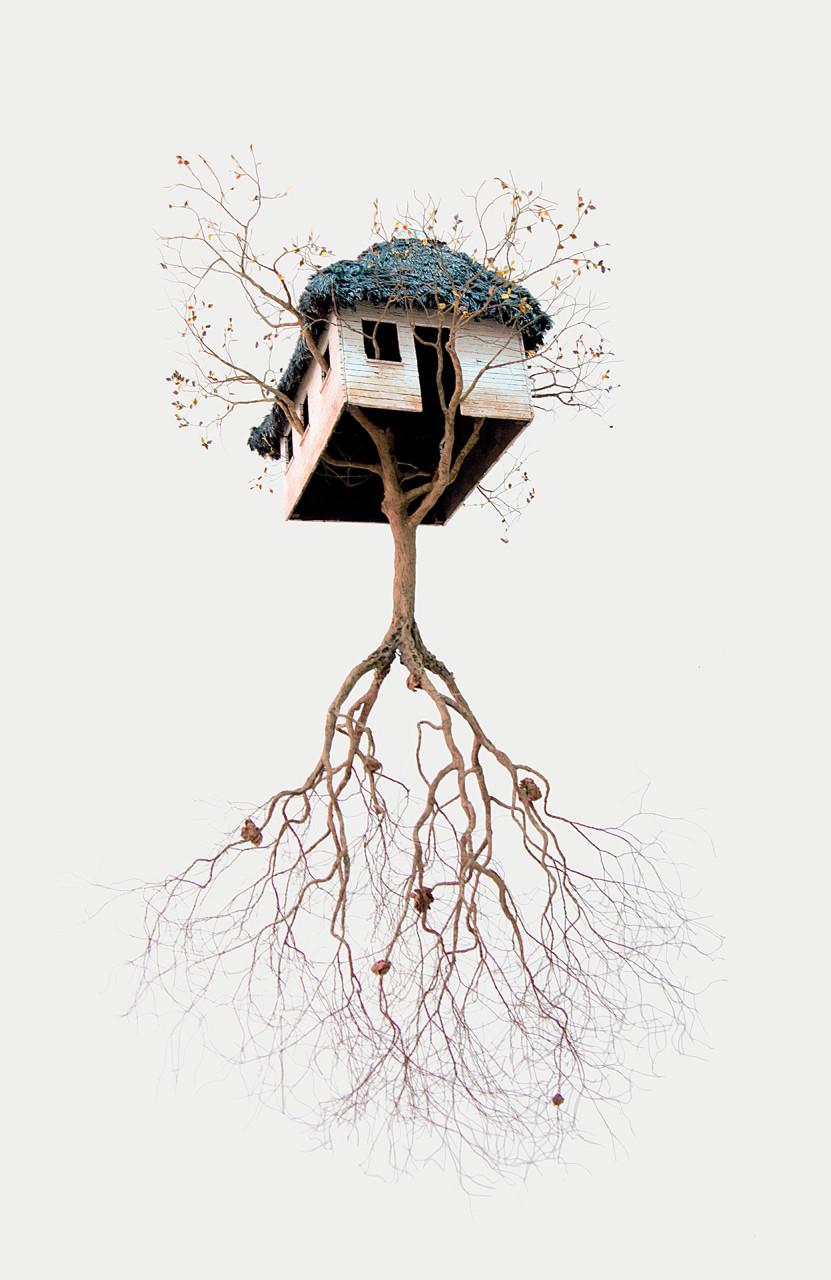 les-sculptures-darbres-suspendus-et-les-racines-cubaines-de-jorge-mayet-01