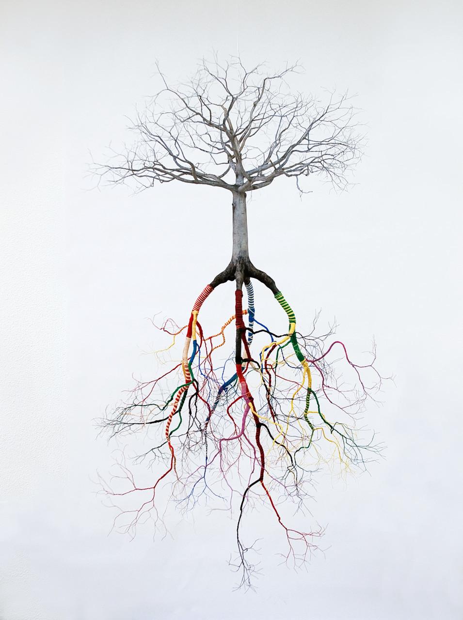 les-sculptures-darbres-suspendus-et-les-racines-cubaines-de-jorge-mayet-07