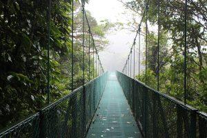 pont-suspendu-costa-rica-monteverde