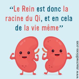 reins-MTC-racine-qi-livre-macroedtions