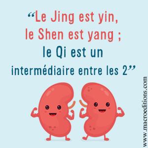 reins-MTC-yin-yang-qi-macroedtions
