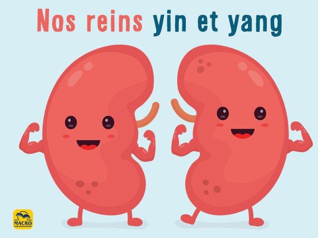 reins-tmc-yin-yang-livre-macroedtions
